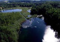 В «Смоленском Поозерье» проведут экологический субботник