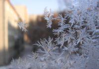 В Смоленской области ноябрь завершится январскими морозами