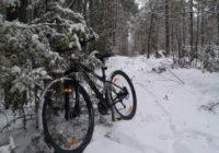 В Реадовском парке состоится велогонка