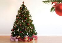 В какую сумму смолянам обойдется новогодняя ёлочка?