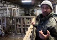 Смоленский приют для животных опубликовал видео о своих обитателях