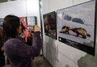 В Смоленске пройдет цикл лекций от сотрудников национального парка