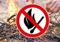 В Смоленске введён противопожарный режим