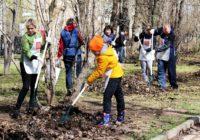 Смолян приглашают принять участие во «Всероссийском субботнике»