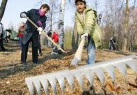 В первые две недели апреля в Смоленской области пройдут субботники