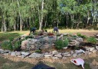 В смоленском парке высадили большую цветочную клумбу