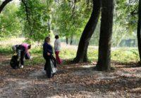 Смоляне приняли участие в акции «Живи, лес!»
