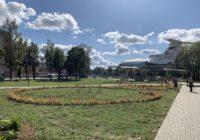 В Смоленске продолжается масштабная кампания по озеленению