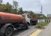 В Смоленске продолжается кампания по озеленению