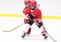 В Смоленске состоится международный турнир по хоккею с шайбой